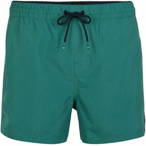 O'Neill PM CALI PANEL SHORTS  L - Pánské šortky do vody